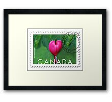 (✿◠‿◠) BLEEDING HEART CANADIAN POSTMARK STAMP (✿◠‿◠) Framed Print
