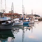 Fishermans Wharf Harbor, San Francisco by Mike Koenig