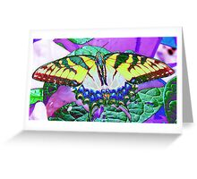 Foil Butterfly Greeting Card