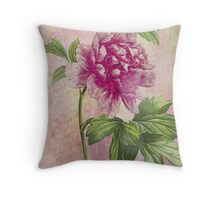 Vintage Pink Peony & French Ephemera Print - French Script and Peony Illustration Throw Pillow