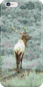 Lone Elk - iPhone Case by © Betty E Duncan ~ Blue Mountain Blessings Photography