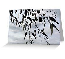 Gum leaves Greeting Card