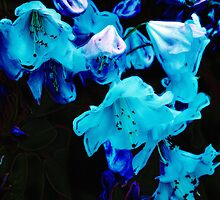 Rhododendrons in Blue, Floral, Blue Flowers by NaturePrints
