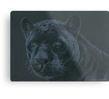 Panther colour pencil art Metal Print