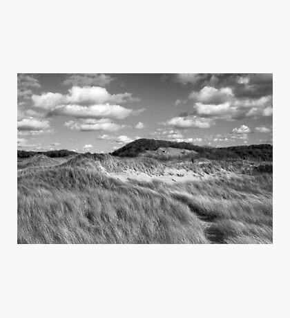 Living Off The Land Photographic Print