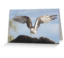 The Osprey (Wings of Balance) Greeting Card