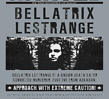 Bellatrix Lestrange Poster by werewolf-Pirate