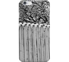 Winter Fence 13 iPhone Case/Skin