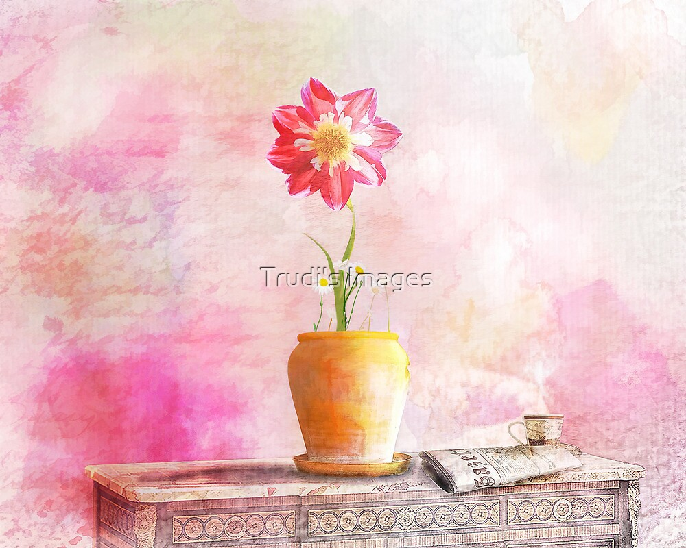 Sunday Morning by Trudi's Images