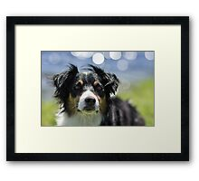 Thinking bubbles Framed Print