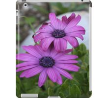 Purple and Pink African Daisy Flowers iPad Case/Skin