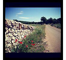 Puglia Photographic Print