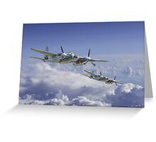 Mosquito Patrol Greeting Card
