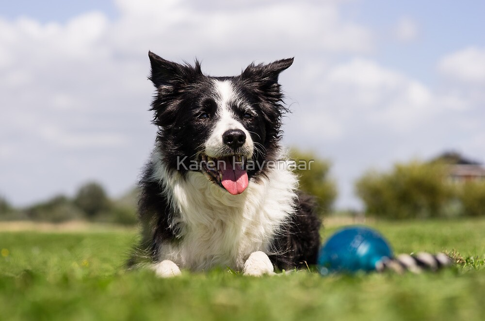 Zoë and her ball by Karen Havenaar
