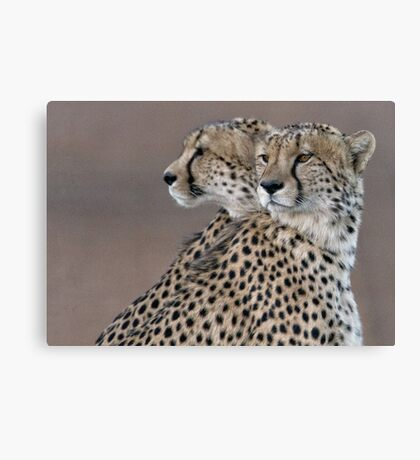 Four Eyes, The Better To Hunt  Canvas Print