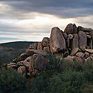 """Rockin Arizona"" by Gail Jones"