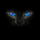 Blue Eyes by HipSwagster