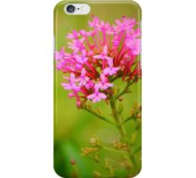 Valerian Flowers iPhone Case/Skin