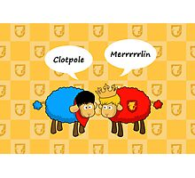 Sheep Merlin  and Arthur... Merrrrrrlin Photographic Print