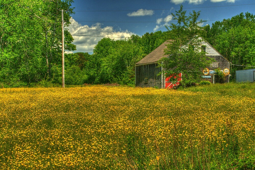 Belfast, Maine by fauselr