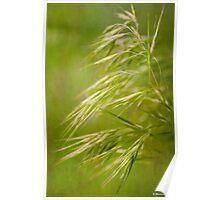 Wispy Grass Poster