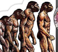 Evolution of the Monolith Sticker