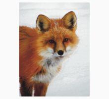 Winter Fox - Close Up One Piece - Short Sleeve