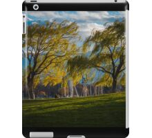 The Wind in These Willows iPad Case/Skin
