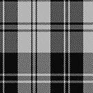 02862 Erskine (Black and White) Clan/Family Tartan Fabric Print Iphone Case by Detnecs2013
