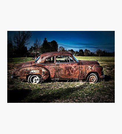 Outstanding in Its Field Photographic Print