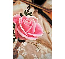 Musical Rose Photographic Print