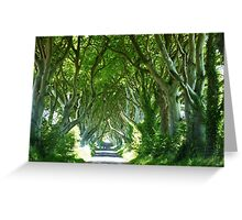 Dark Hedges  Greeting Card