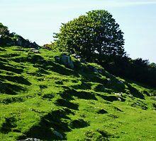 Torr Head Ireland  by Sean McAughey