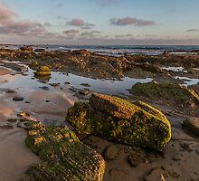 Newport Beach Dusk by Richard Thelen