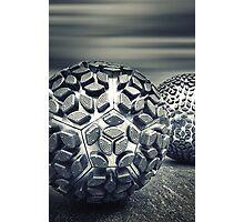 Odd Balls Photographic Print