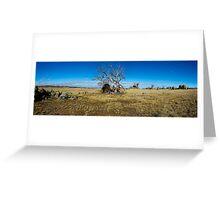 Gnarled panorama Greeting Card
