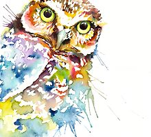 Owl Curious by IsabelSalvador