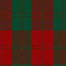 02870 Erskine (Vestiarium Scoticum) Clan/Family Tartan Fabric Print Iphone Case by Detnecs2013