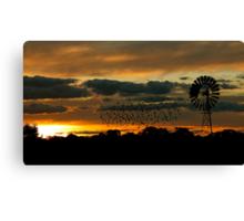 Hay Sunset Canvas Print