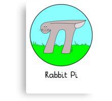 Rabbit Pi Canvas Print