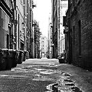 Alley by INFIDEL