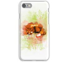 Vulpes Cutes iPhone Case/Skin
