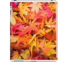 Orange 00 - Acer palmatum / Japanese Maple leaves iPad Case/Skin