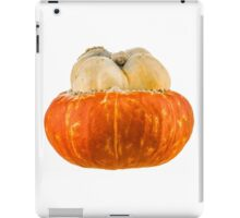 Orange 12 - Cucurbita maxima / Turbana squash iPad Case/Skin
