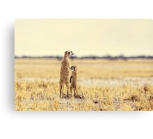 Yes Mum! Canvas Print