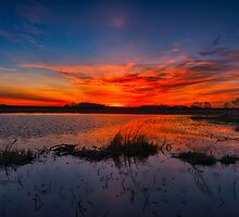 Prairie Dawn 4939_2013 by Ian McGregor
