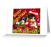 Christmas kitty cards Greeting Card