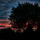 From My Front Porch by Keith Reesor