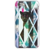 Festival Panther iPhone Case/Skin