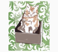 Cat in a Draw  by VintageLovexx
